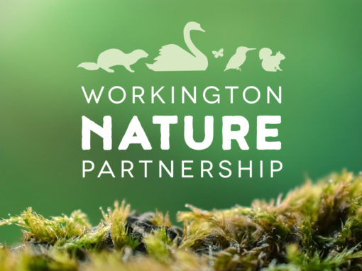 Workington Nature Partnership