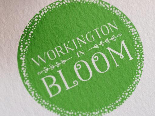 Workington in Bloom